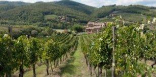 Chianti wijnroute Toscane rijden