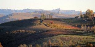 Truffels zoeken in Piemonte