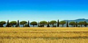 De Verborgen schatten van Toscane